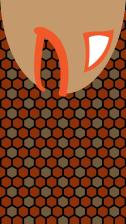 fish-head-top-01