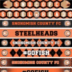 VOTE: Steelheads first-ever official scarf should be…