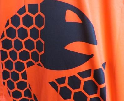 kits-orangefish